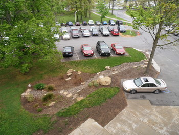 view from above of the rain garden surrounded by parking lot and parked cars