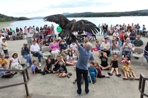 Science on the River participants observe a Golden Eagle