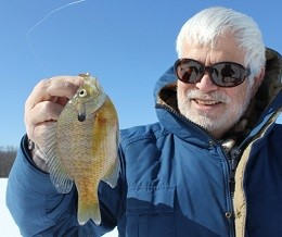 Man holding up a bluegill sunfish that has just been caught on a sunny winter day