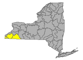 Map of NYS identifying the Allegheny Watershed