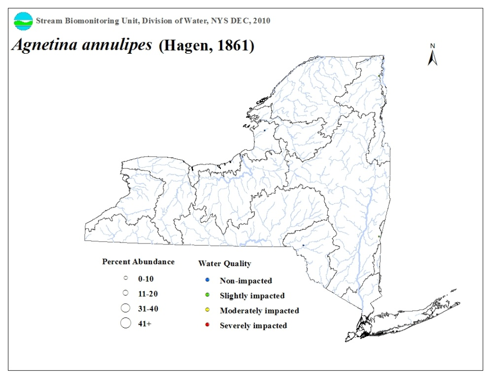 Distribution map of the Agnetina annulipes stonefly in NYS