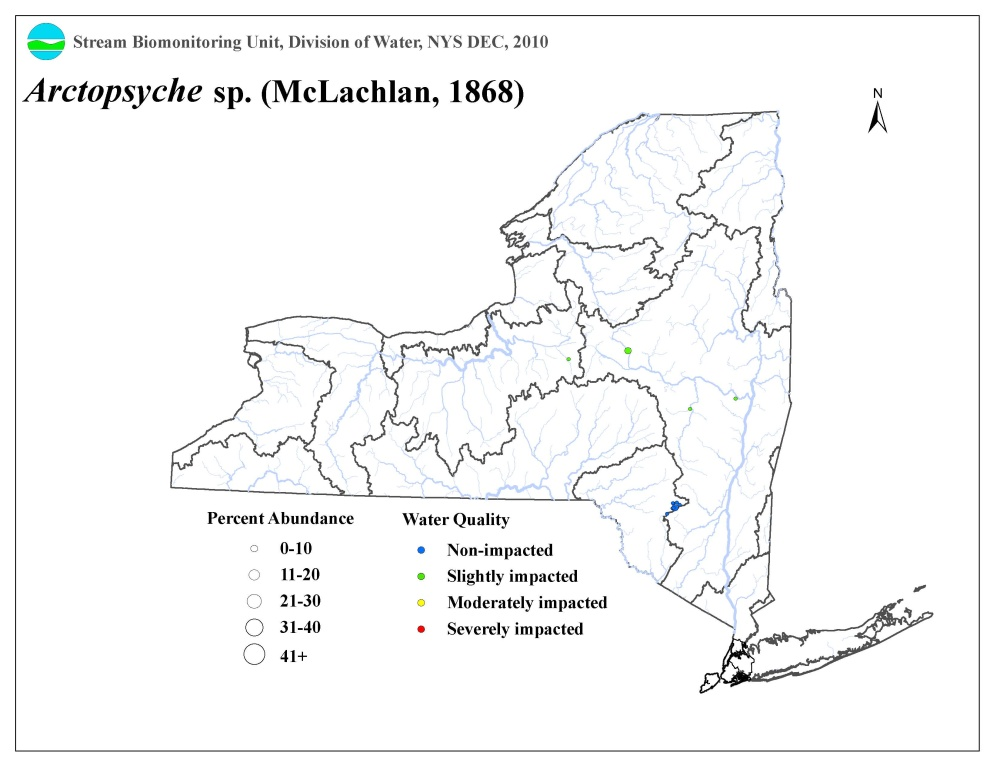 Distribution map of the Arctopsyche sp. caddisfly in NYS