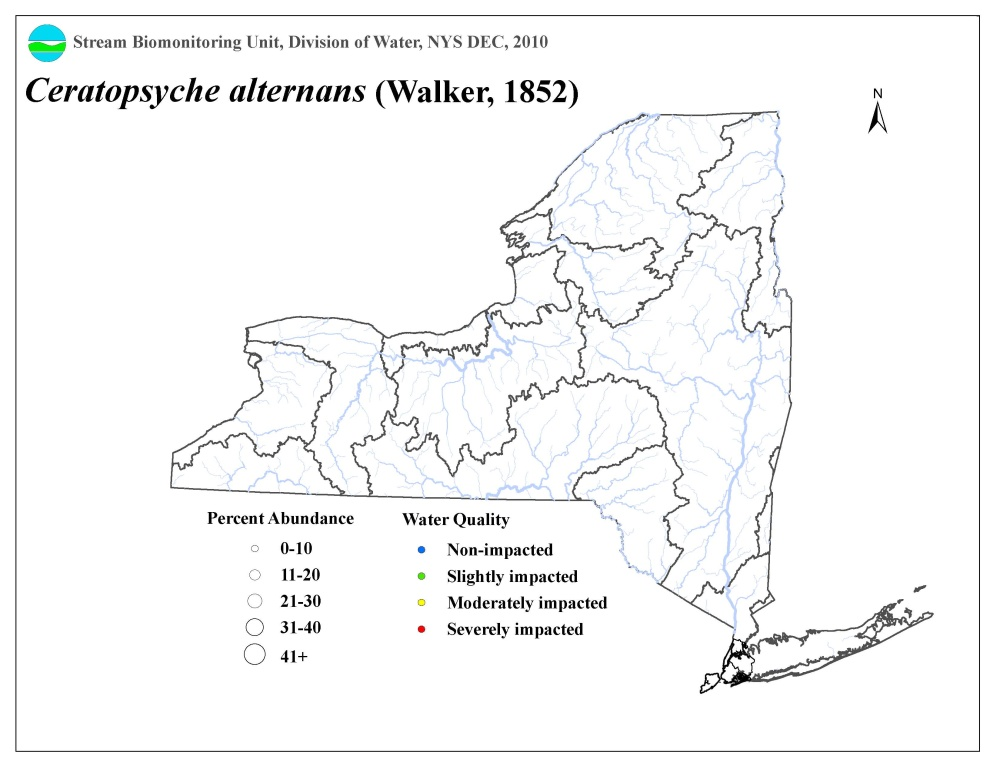 Distribution map of the Ceratopsyche alternans caddisfly in NYS