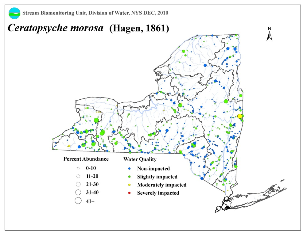 Distribution map of the Ceratopsyche morosa caddisfly in NYS