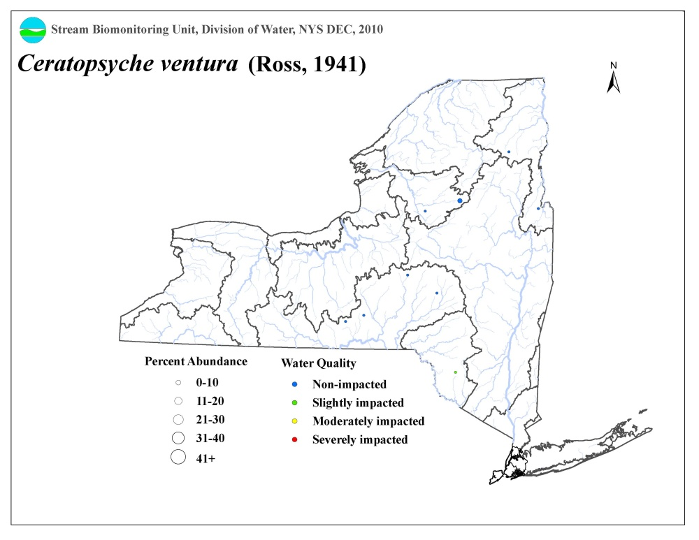 Distribution map of the Ceratopsyche ventura caddisfly in NYS