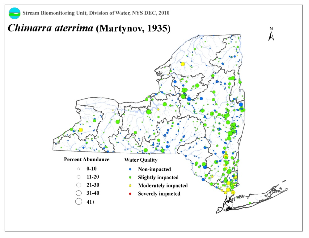 Distribution map of the Chimarra aterrima caddisfly in NYS