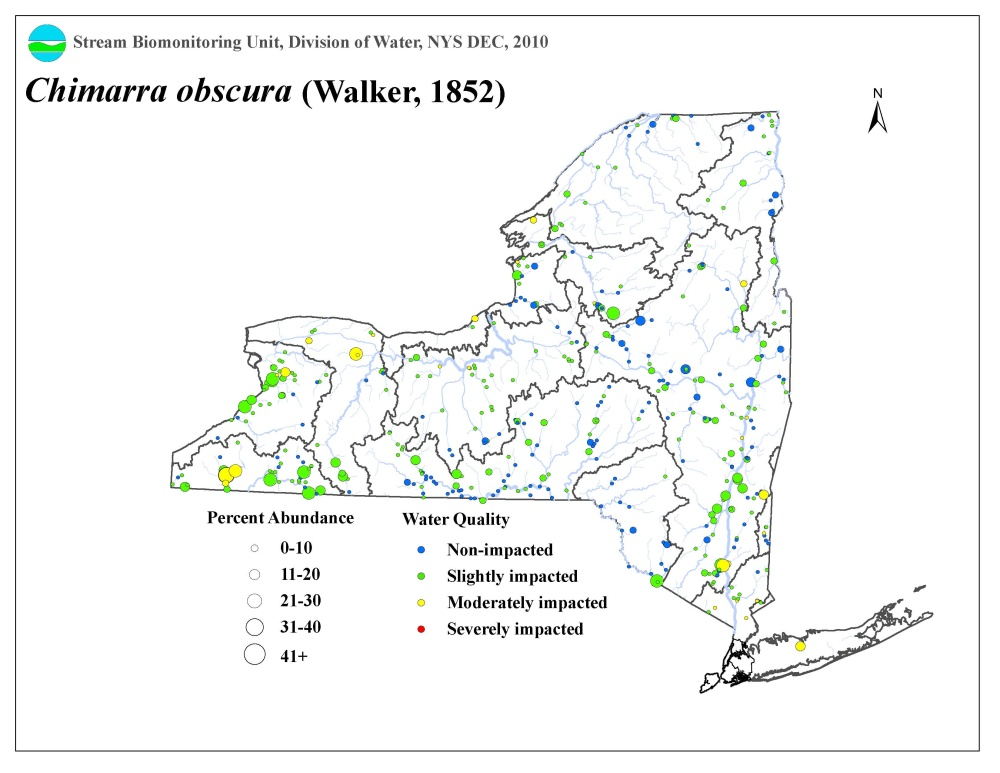Distribution map of the Chimarra obscura caddisfly in NYS