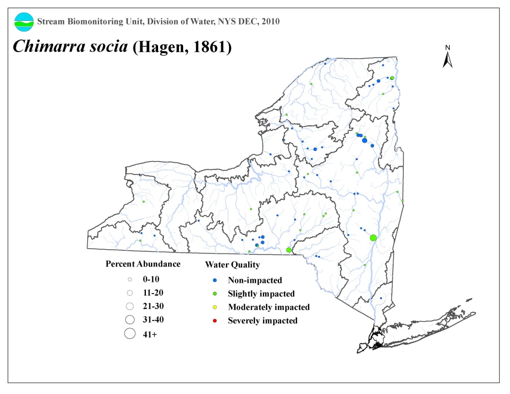 Distribution map of the Chimarra socia caddisfly in NYS