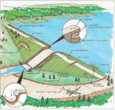 Drawing of dam with potential problem indicators such as cracking and seepage