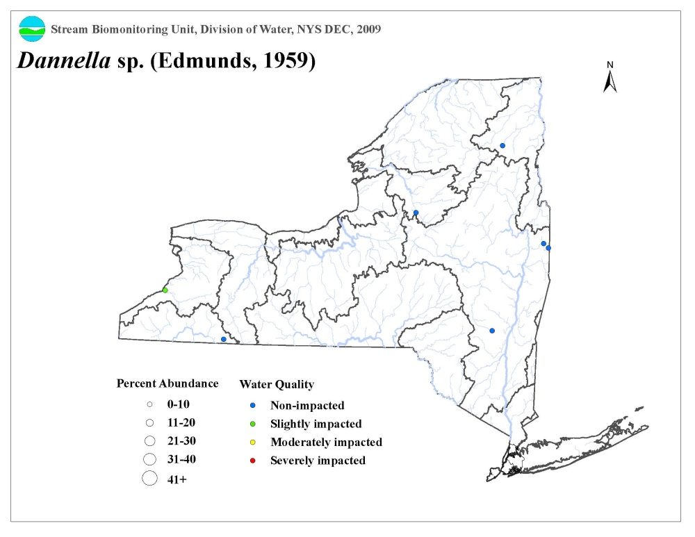Distribution map of the Dannella sp. mayfly in NYS