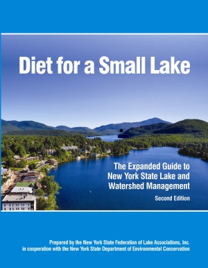 The cover for the guide Diet for a Small Lake showing a lake with surrounding buildings and trees