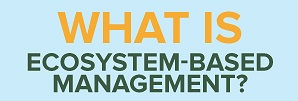 infographic depicting ecosystem based management