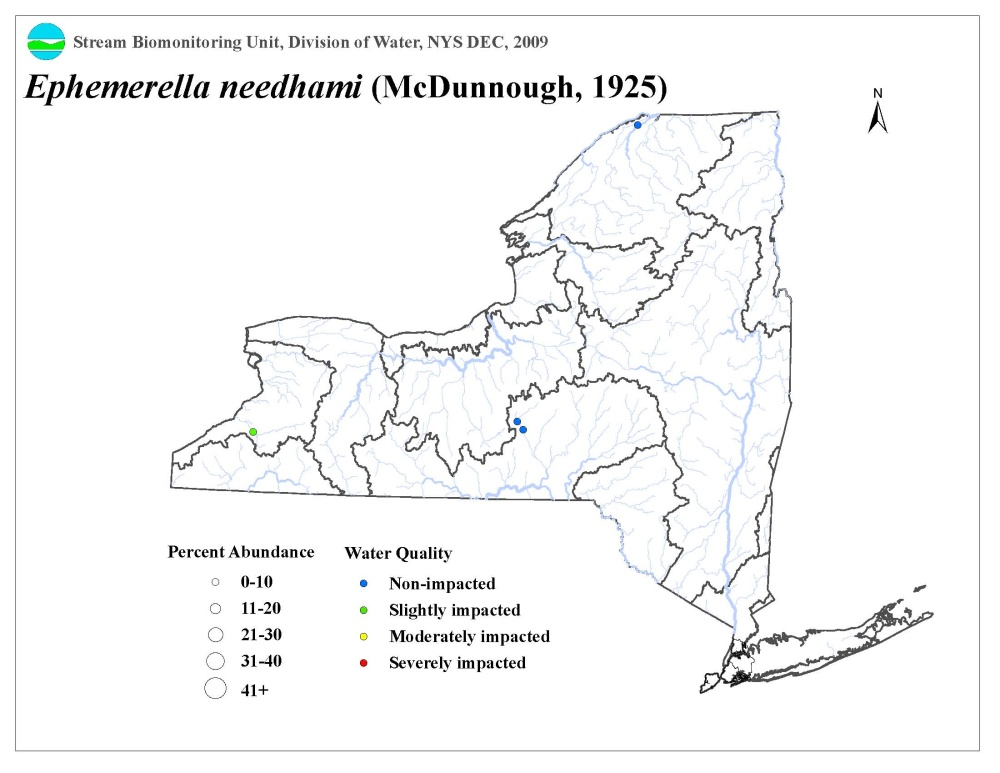 Distribution map of the Ephemerella needhami mayfly in NYS