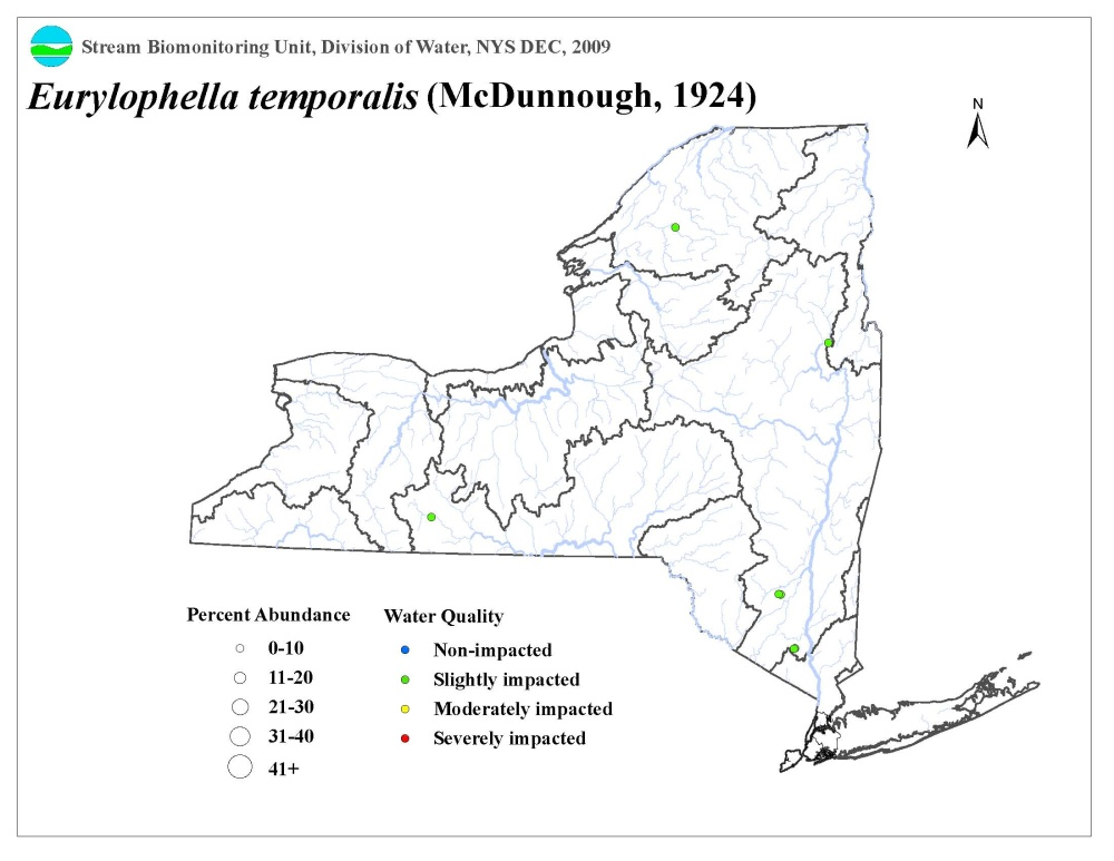 Distribution map of the Eurylophella temporalis mayfly in NYS