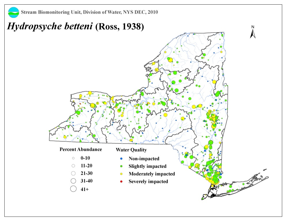 Distribution map of the Hydropsyche betteni caddisfly in NYS