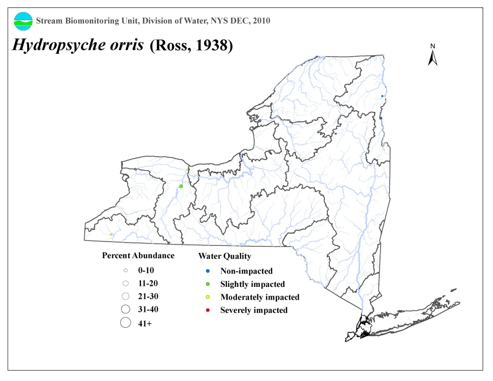 Distribution map of the Hydropsyche orris caddisfly in NYS