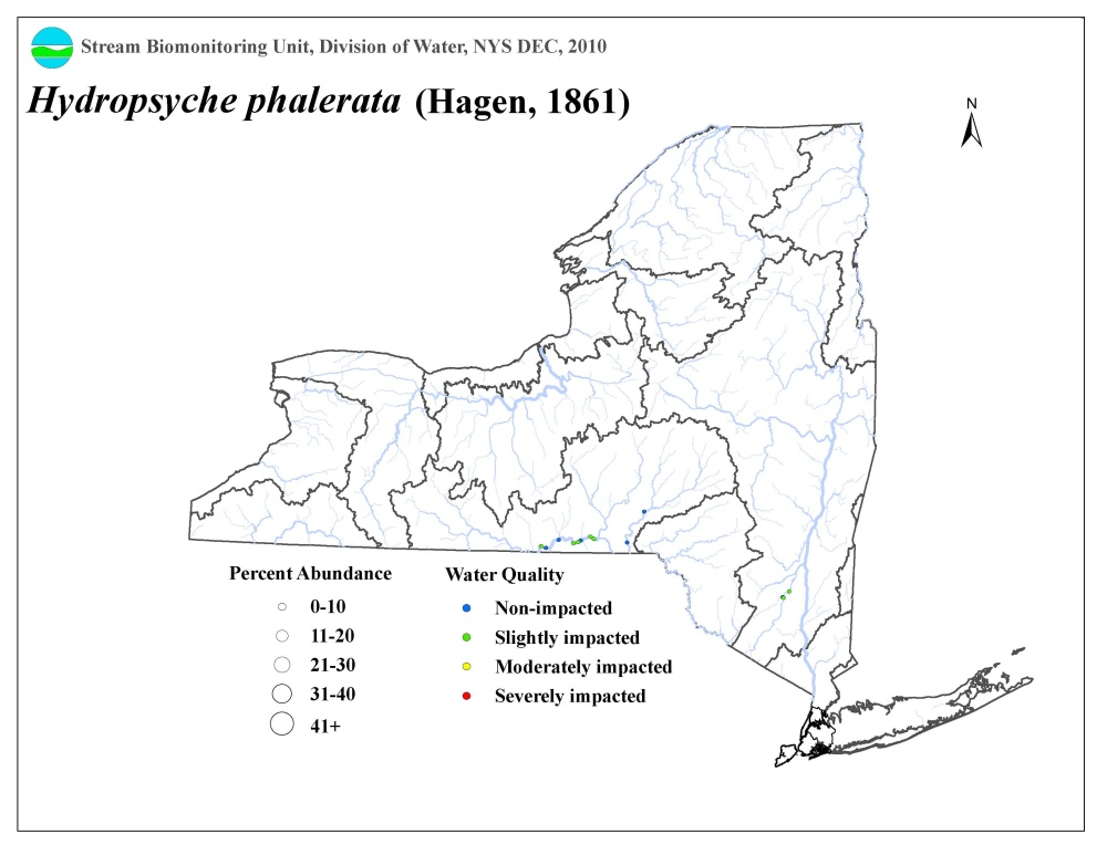 Distribution map of the Hydropsyche phalerata caddisfly in NYS