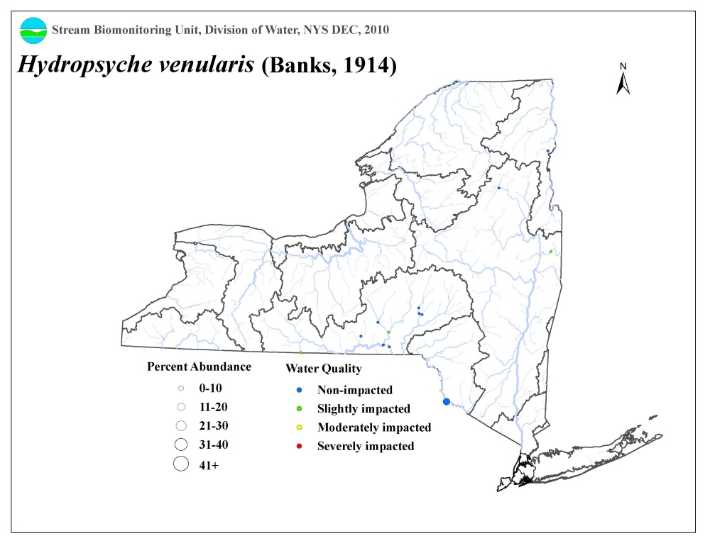 Distribution map of the Hydropsyche venularis caddisfly in NYS