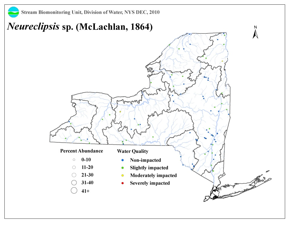 Distribution map of the Neureclipsis sp. caddisfly in NYS