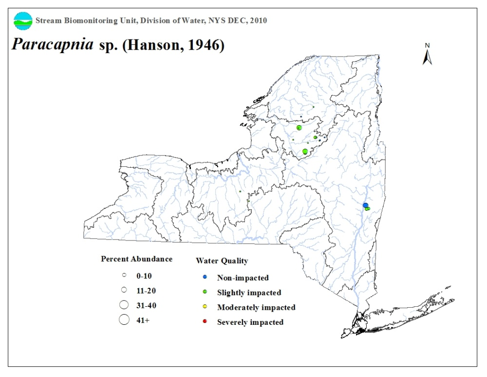 Distribution map of the Paracapnia sp. stonefly in NYS