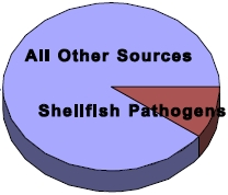 pathogen contamination of shellfish pie chart
