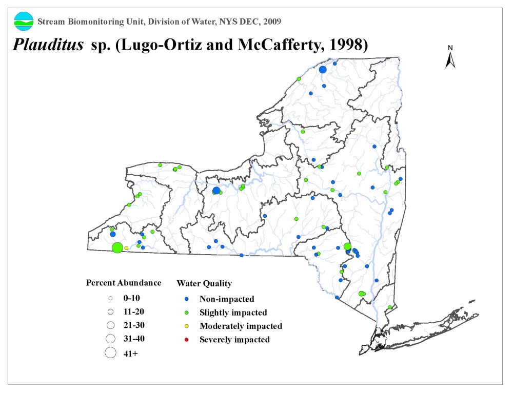 Distribution map of the Plauditus sp. in NYS