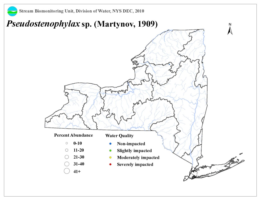 Distribution map of the Pseudostenophylax sp. caddisfly in NYS
