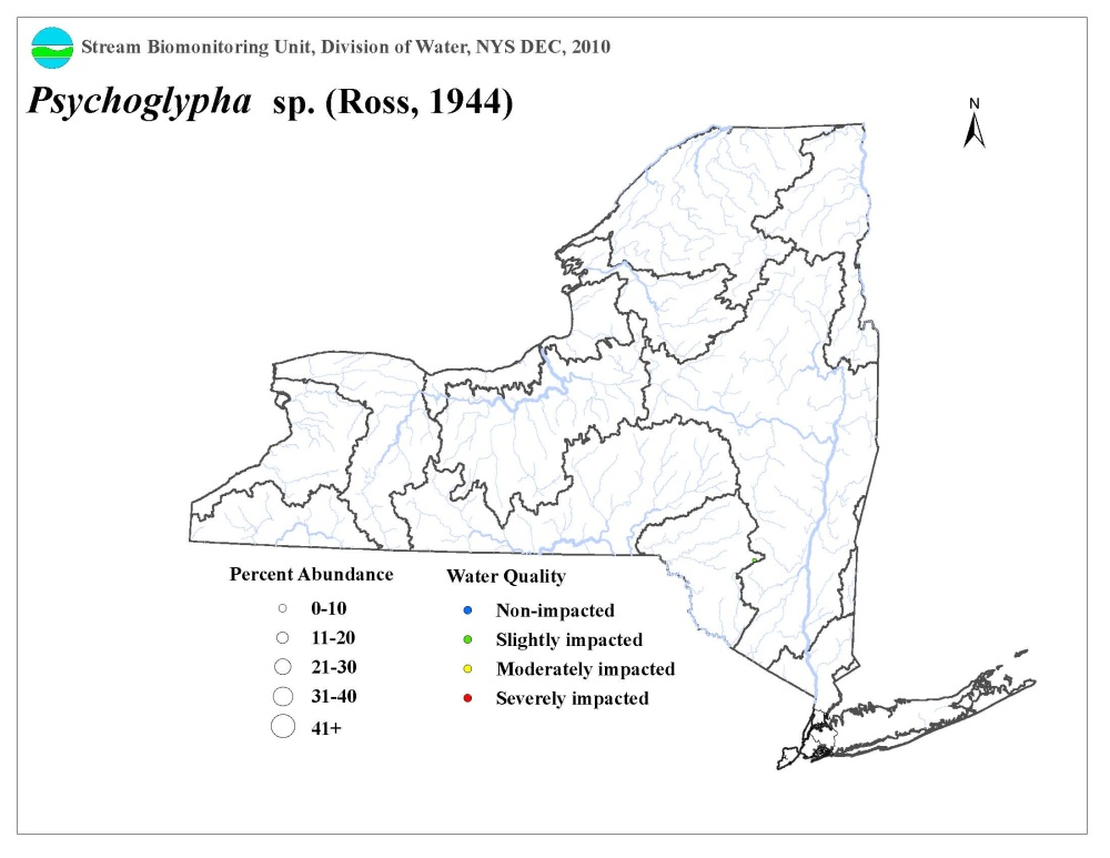 Distribution map of the Psychoglypha sp. caddisfly in NYS