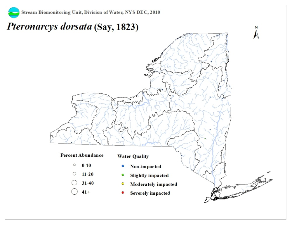 Distribution map of the Pteronarcys dorsata stonefly in NYS