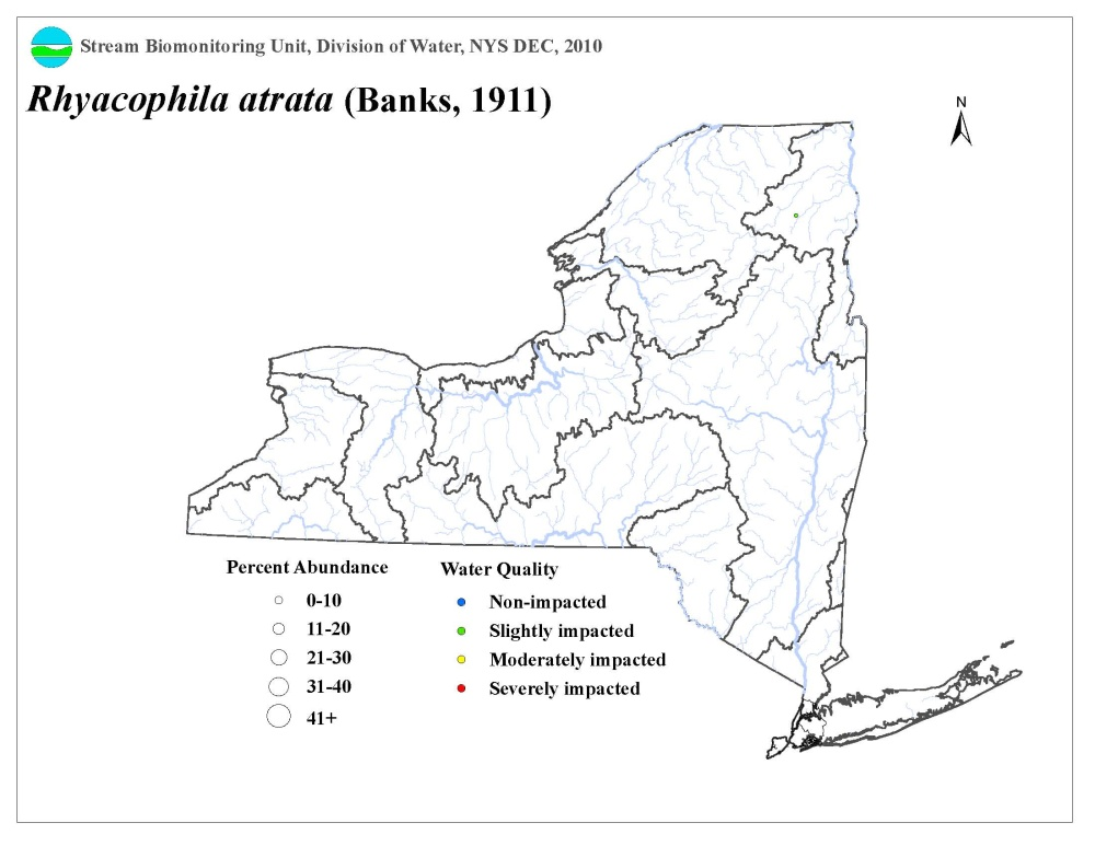 Distribution map of the Rhyacophila atrata caddisfly in NYS