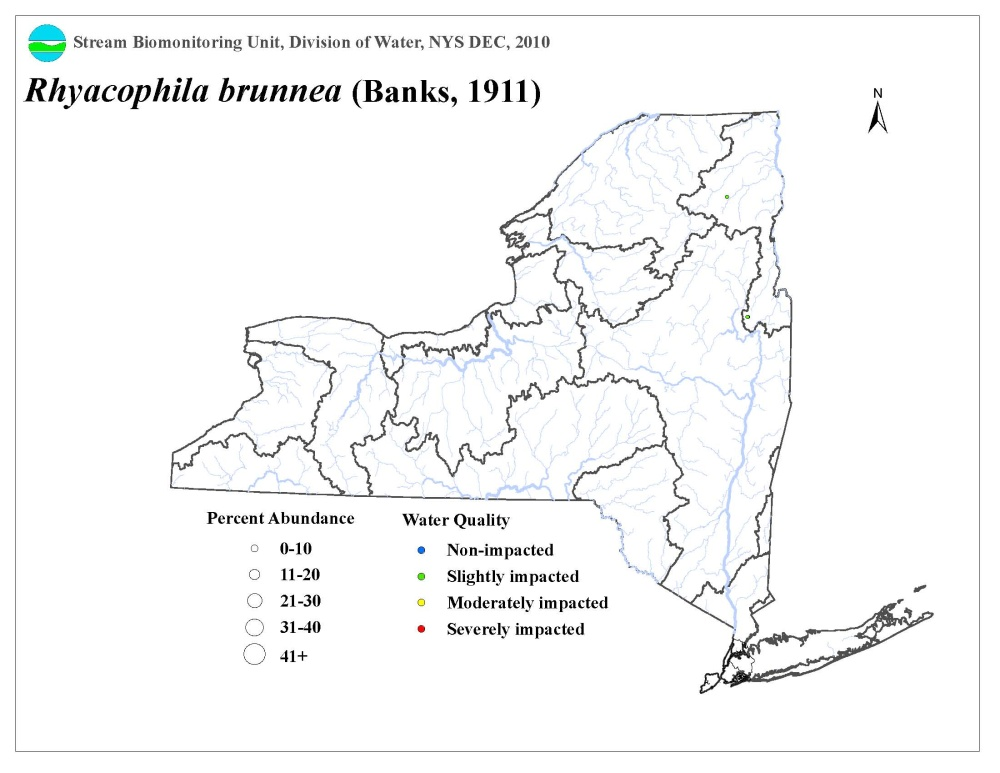 Distribution map of the Rhyacophila brunnea caddisfly in NYS