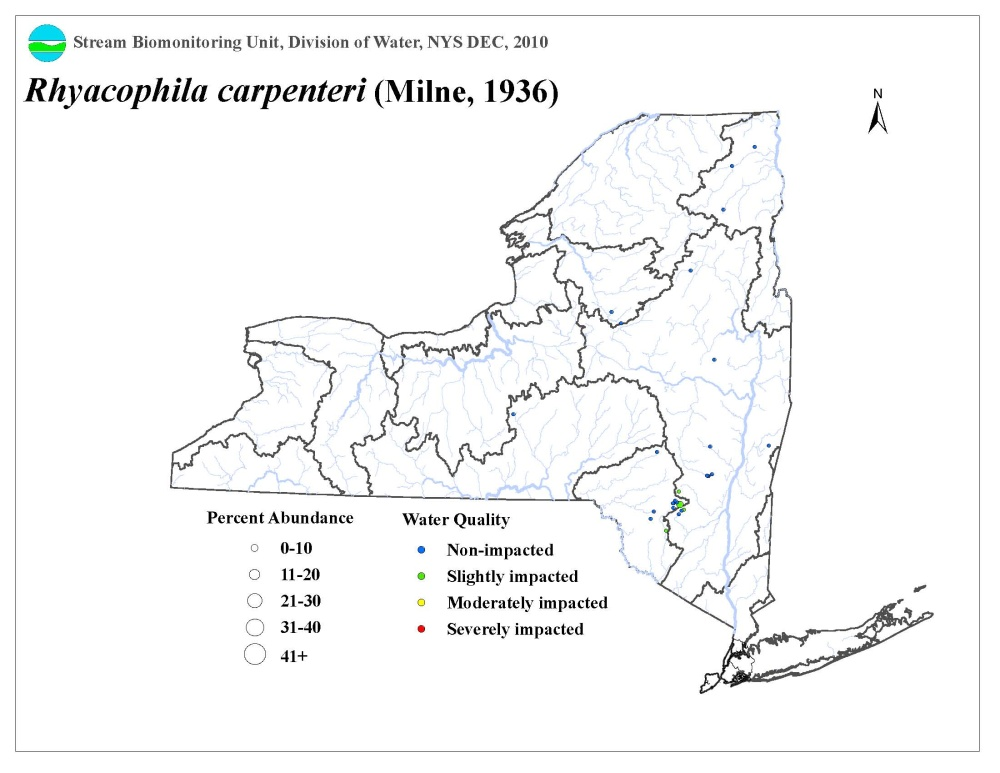 Distribution map of the Rhyacophila carpenteri caddisfly in NYS