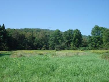 Wildlife Management Area - NYS Dept. of Environmental Conservation