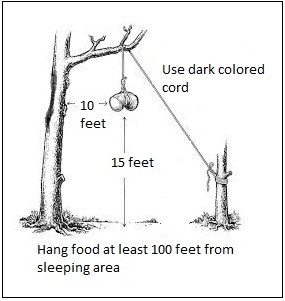 Graphic illustrating the proper method to hang food in the backcountry.