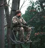 A Bowhunter in a Tree