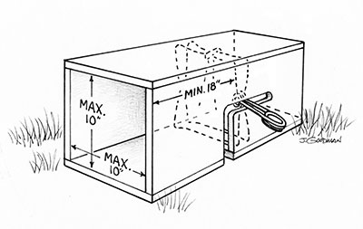 how to build a wooden box trap