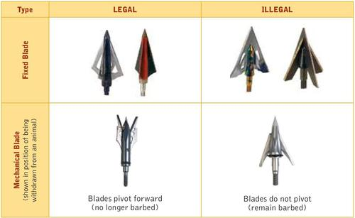 Illustration of which barbed broadheads are legal.