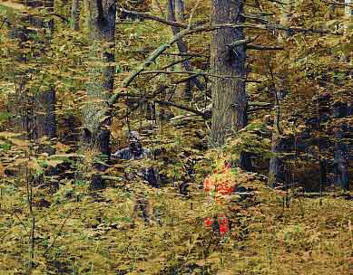 a hunter in orange suit and one in dark suit in the woods
