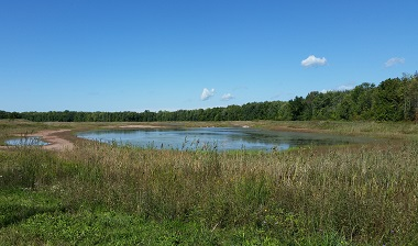Waterfowl impoundment on Cicero Wildlife Management Area