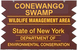 conewango swamp brown sign