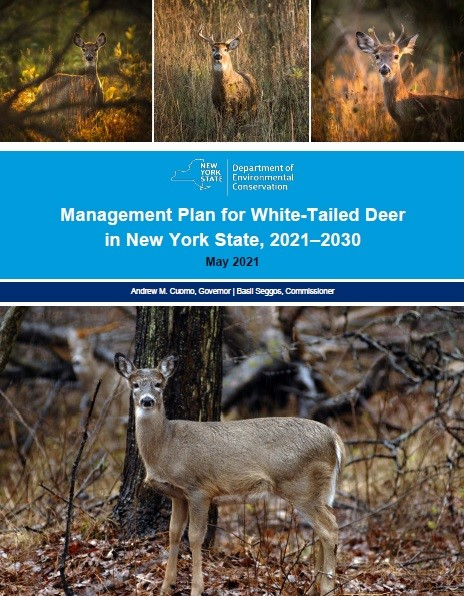 Cover image of draft NYS Deer Management Plan