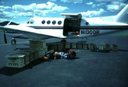 An small airplane with and boxes which contain eaglets to be loaded