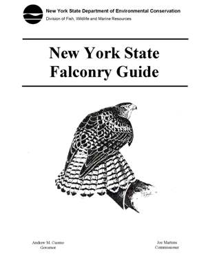 falconry guide cover image