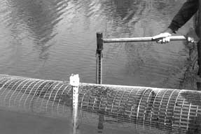 Driving fence posts in the dam