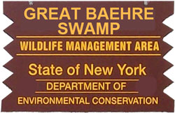 Great Baehre Swamp Brown Sign
