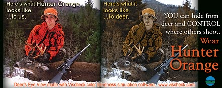 Photos of hunter in human vision and in deer vision