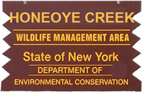 Honeoye Creek WMA Brown Sign