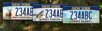 Lifetime sporting licenses nys dept of environmental conservation three sample hunting fishing and parks license plates publicscrutiny Images