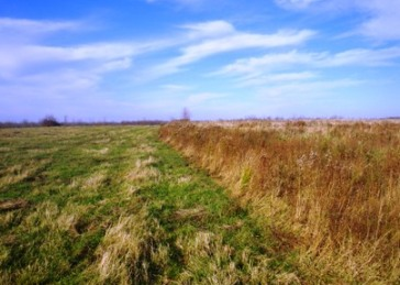 Landowner Incentive Program Grassland Protection Project Site