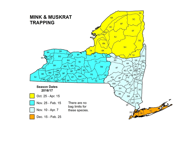 Map of NYS with season dates for trapping mink and muskrat